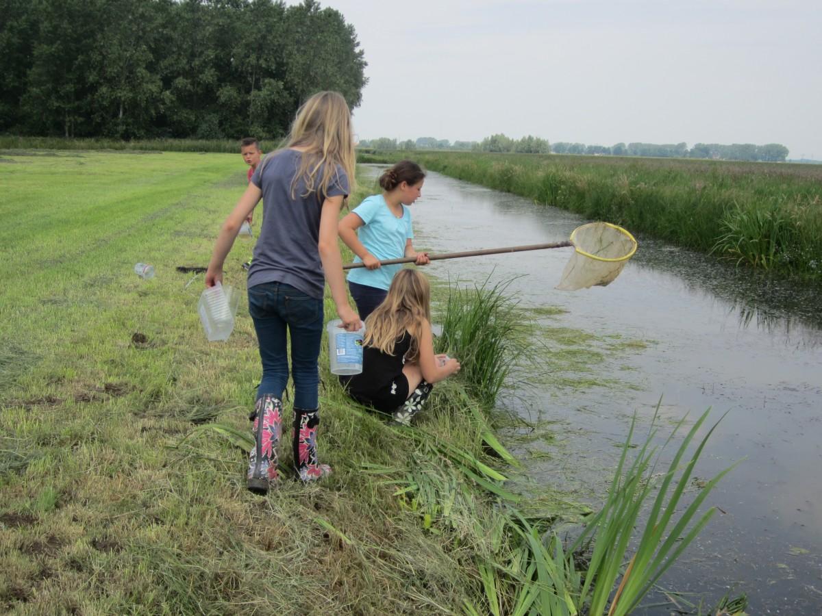 Slootonderzoek door leerlingen Florens Radewijnsschool